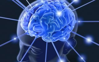 What is the Memory Capacity of a Human Brain?